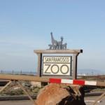 サンフランシスコ動物園1-カリフォルニア旅行記2009/12 /17