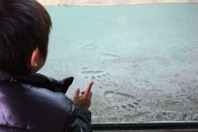 2009-12-18_06-40-55_0.JPG